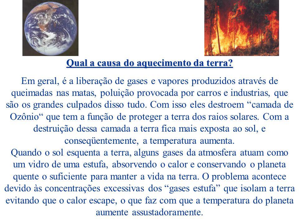 Qual a causa do aquecimento da terra.