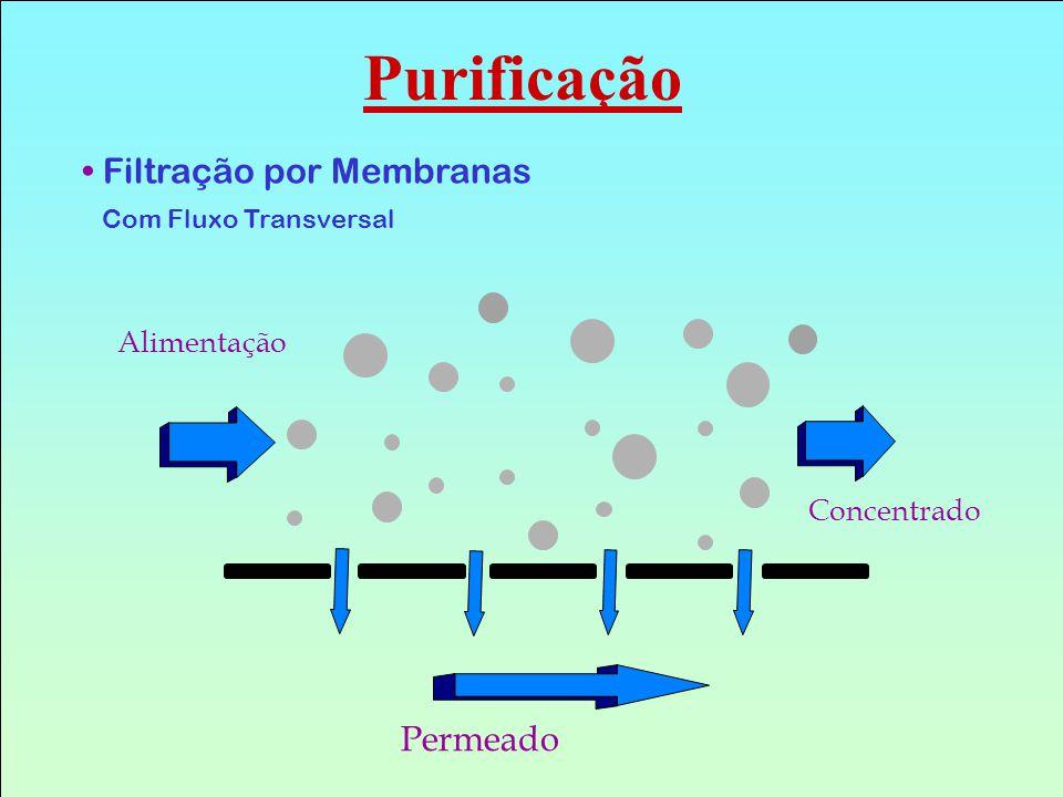 Filtração por Membranas Com Fluxo Transversal Alimentação Concentrado Permeado Purificação