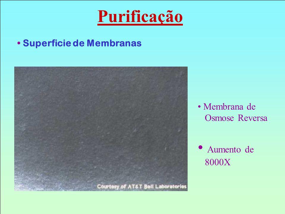Superficie de Membranas Membrana de Osmose Reversa Aumento de 8000X Purificação