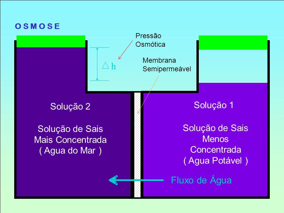 O S M O S E Membrana Semipermeável Solução de Sais Menos Concentrada ( Agua Potável ) Solução 1 Fluxo de Água h Solução 2 Solução de Sais Mais Concent