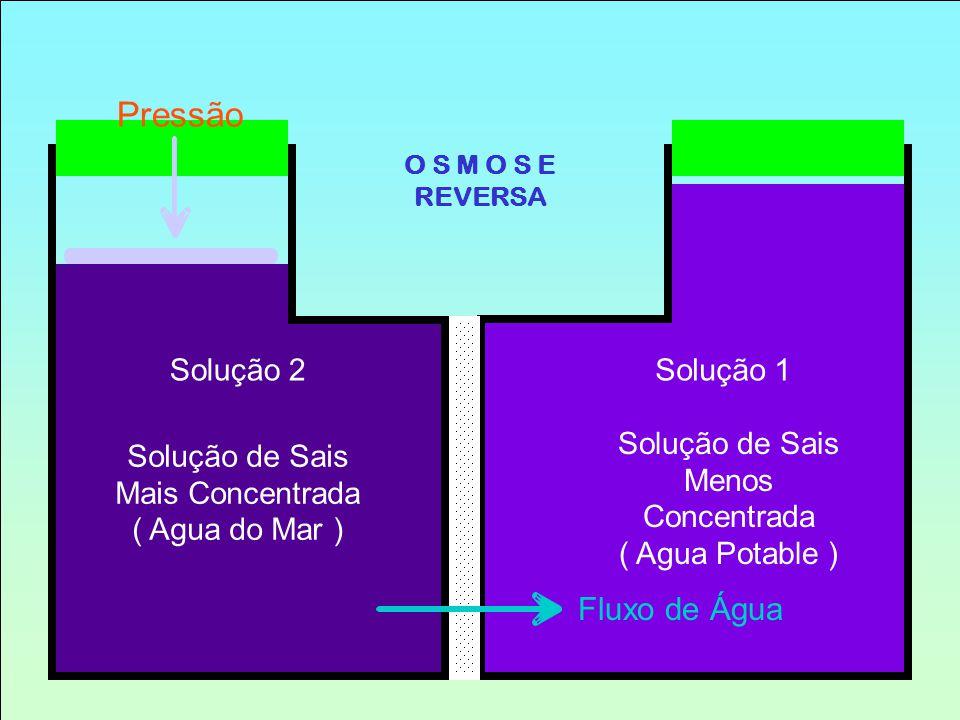 Pressão Fluxo de Água Solução 2Solução 1 Solução de Sais Mais Concentrada ( Agua do Mar ) Solução de Sais Menos Concentrada ( Agua Potable ) O S M O S