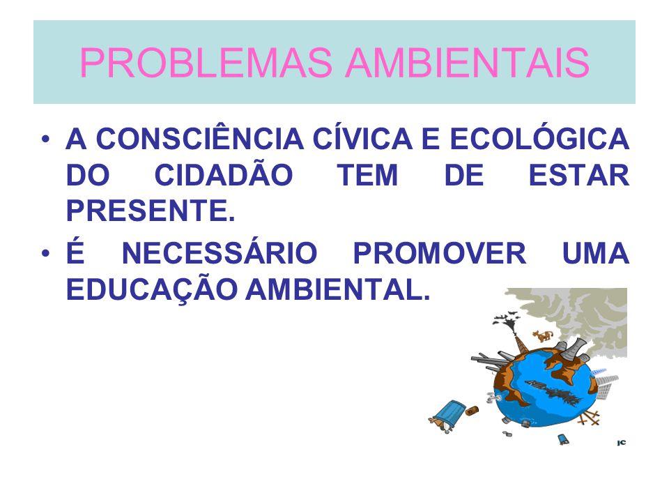 PROBLEMAS AMBIENTAIS A CONSCIÊNCIA CÍVICA E ECOLÓGICA DO CIDADÃO TEM DE ESTAR PRESENTE. É NECESSÁRIO PROMOVER UMA EDUCAÇÃO AMBIENTAL.