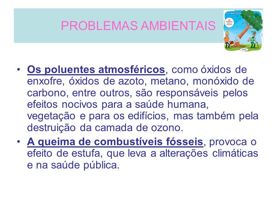 PROBLEMAS AMBIENTAIS Os poluentes atmosféricos, como óxidos de enxofre, óxidos de azoto, metano, monóxido de carbono, entre outros, são responsáveis pelos efeitos nocivos para a saúde humana, vegetação e para os edifícios, mas também pela destruição da camada de ozono.