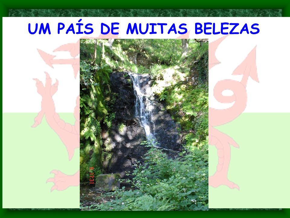 UM PAÍS DE MUITAS BELEZAS