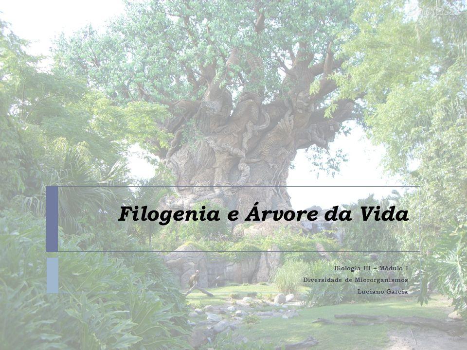 Filogenia e Árvore da Vida Biologia III – Módulo I Diversidade de Microrganismos Luciano Garcia