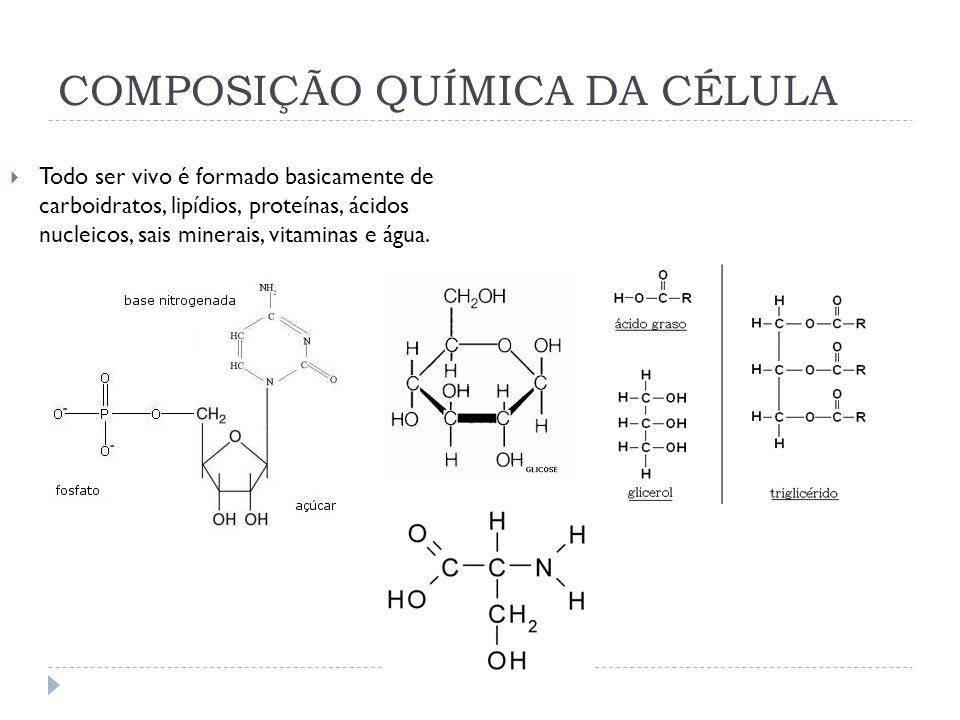 COMPOSIÇÃO QUÍMICA DA CÉLULA  Todo ser vivo é formado basicamente de carboidratos, lipídios, proteínas, ácidos nucleicos, sais minerais, vitaminas e