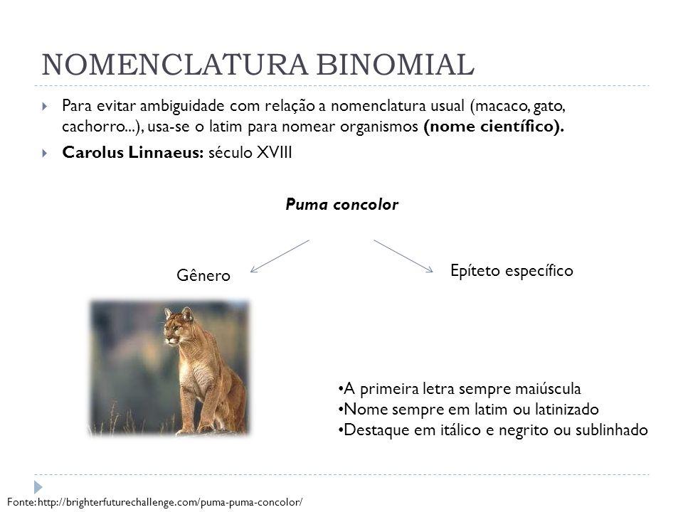 NOMENCLATURA BINOMIAL  Para evitar ambiguidade com relação a nomenclatura usual (macaco, gato, cachorro...), usa-se o latim para nomear organismos (n