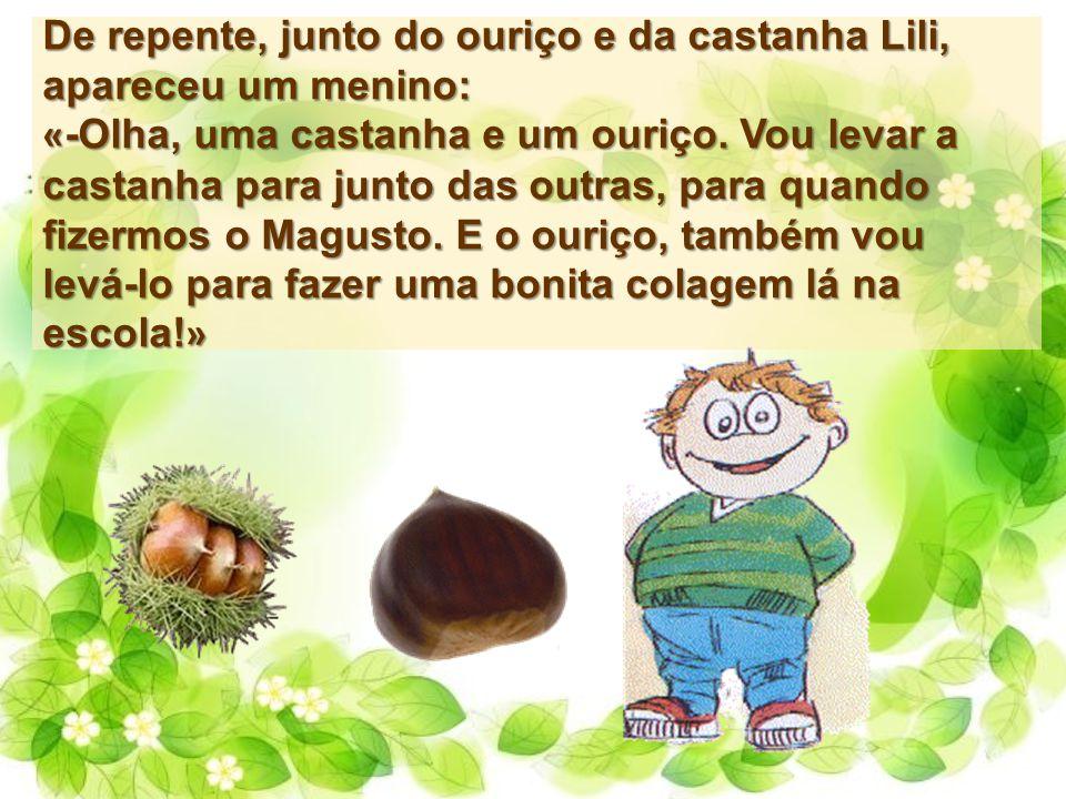 De repente, junto do ouriço e da castanha Lili, apareceu um menino: « -Olha, uma castanha e um ouriço. Vou levar a castanha para junto das outras, par