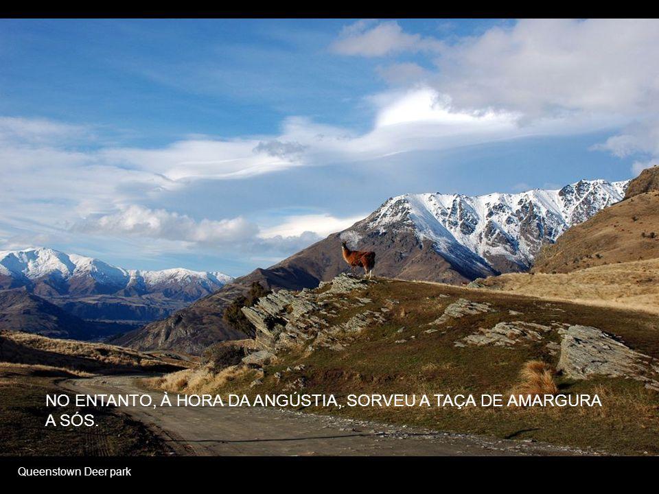 Lake Wanaka of Winter OS ANJOS OBEDECIAM-LHE À VONTADE...