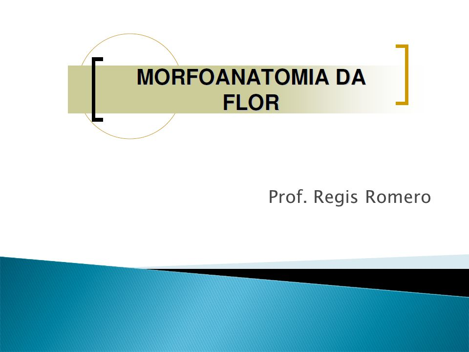  Dicogamia: quando em uma flor monóclina ocorre a liberação do pólen concomitantemente à maturação do estigma, falamos em homogamia.