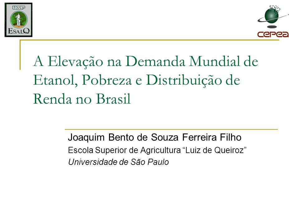 A Elevação na Demanda Mundial de Etanol, Pobreza e Distribuição de Renda no Brasil Joaquim Bento de Souza Ferreira Filho Escola Superior de Agricultur