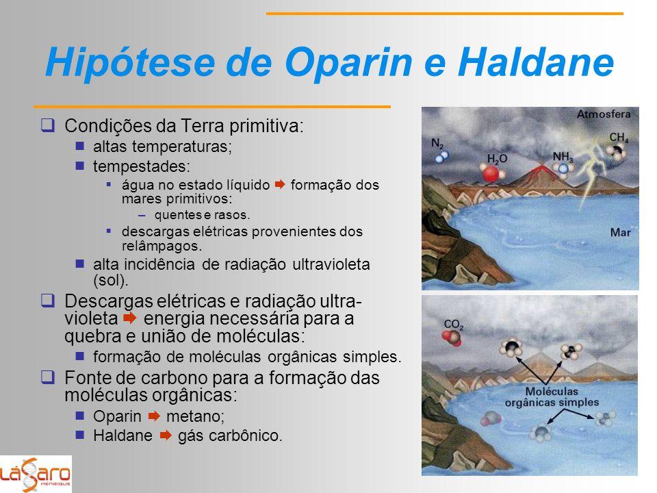 Hipótese de Oparin e Haldane  Condições da Terra primitiva:  altas temperaturas;  tempestades:  água no estado líquido  formação dos mares primitivos: –quentes e rasos.