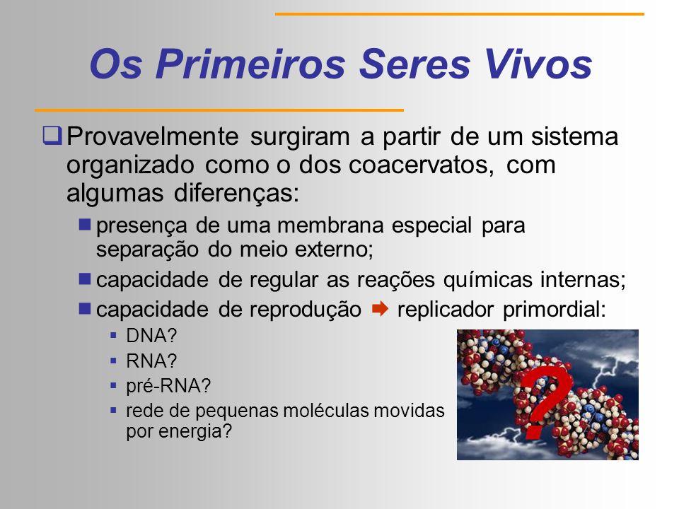 Os Primeiros Seres Vivos  Provavelmente surgiram a partir de um sistema organizado como o dos coacervatos, com algumas diferenças:  presença de uma membrana especial para separação do meio externo;  capacidade de regular as reações químicas internas;  capacidade de reprodução  replicador primordial:  DNA.