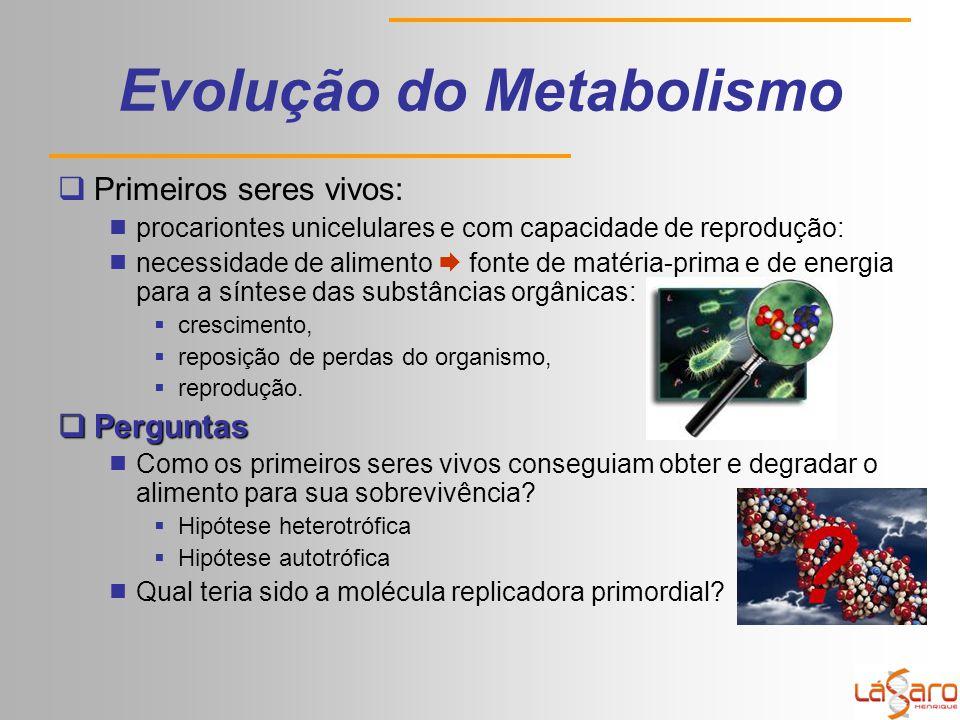 Evolução do Metabolismo  Primeiros seres vivos:  procariontes unicelulares e com capacidade de reprodução:  necessidade de alimento  fonte de matéria-prima e de energia para a síntese das substâncias orgânicas:  crescimento,  reposição de perdas do organismo,  reprodução.