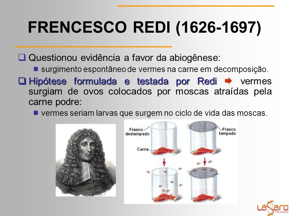 FRENCESCO REDI (1626-1697)  Questionou evidência a favor da abiogênese:  surgimento espontâneo de vermes na carne em decomposição.