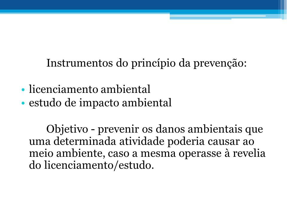 Instrumentos do princípio da prevenção: licenciamento ambiental estudo de impacto ambiental Objetivo - prevenir os danos ambientais que uma determinad