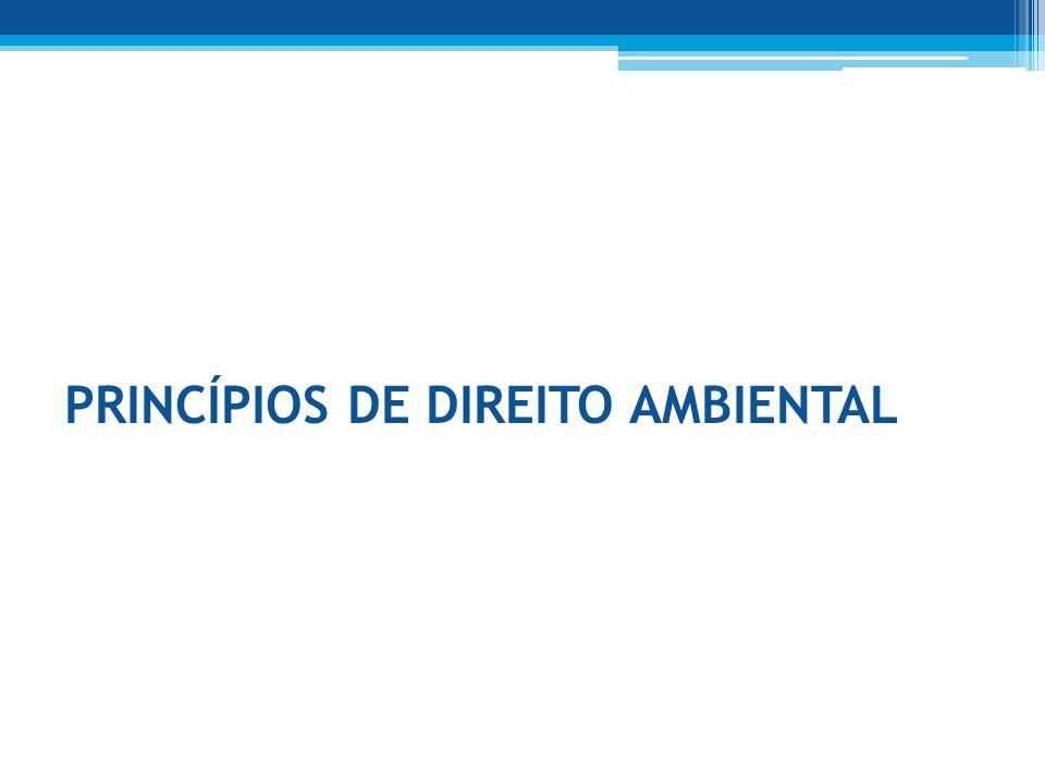 PRINCÍPIOS DE DIREITO AMBIENTAL