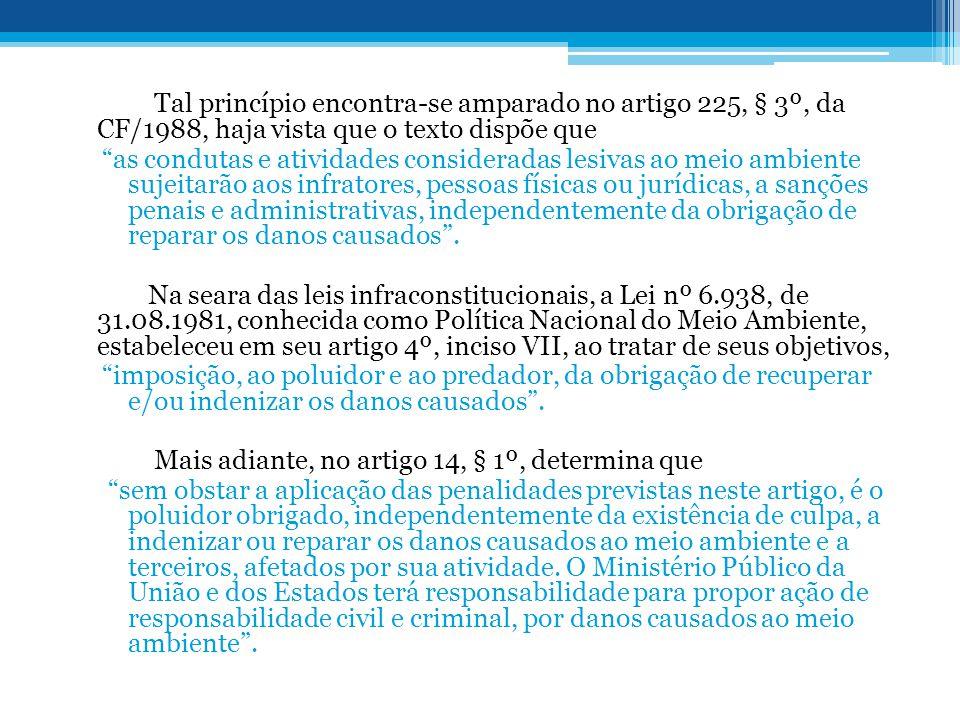 """Tal princípio encontra-se amparado no artigo 225, § 3º, da CF/1988, haja vista que o texto dispõe que """"as condutas e atividades consideradas lesivas a"""
