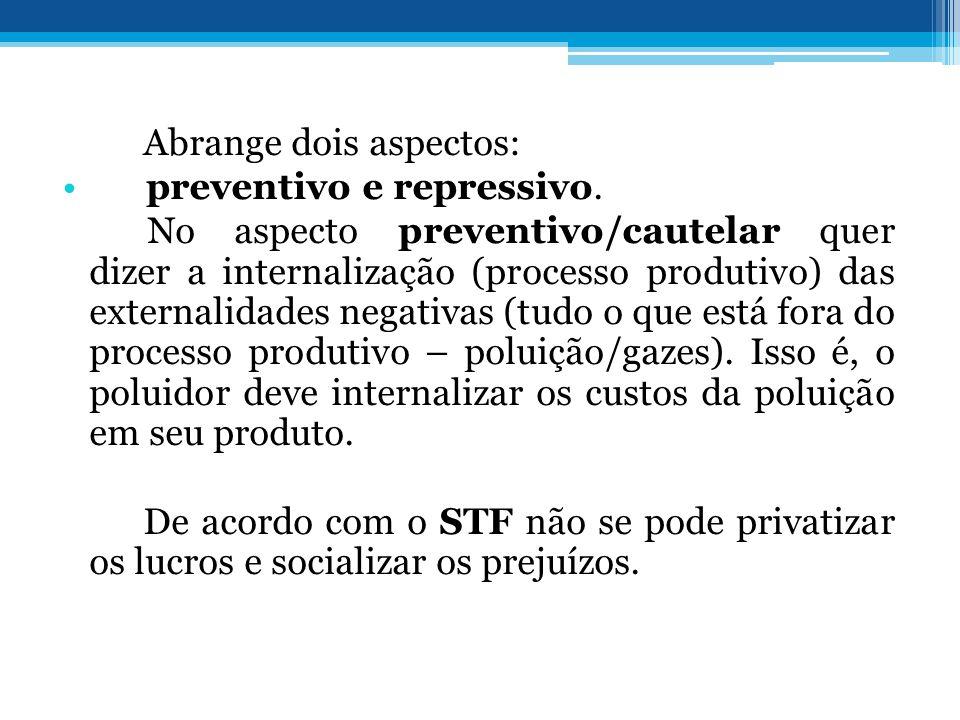 Abrange dois aspectos: preventivo e repressivo. No aspecto preventivo/cautelar quer dizer a internalização (processo produtivo) das externalidades neg