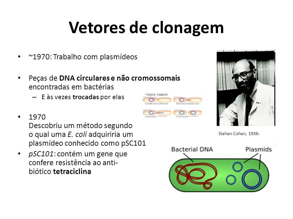 Vetores de clonagem ~1970: Trabalho com plasmídeos Peças de DNA circulares e não cromossomais encontradas em bactérias – E às vezes trocadas por elas
