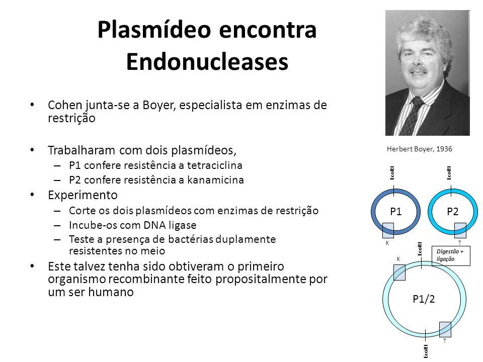 Plasmídeo encontra Endonucleases Cohen junta-se a Boyer, especialista em enzimas de restrição Trabalharam com dois plasmídeos, – P1 confere resistênci