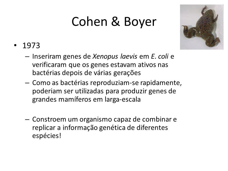 Cohen & Boyer 1973 – Inseriram genes de Xenopus laevis em E. coli e verificaram que os genes estavam ativos nas bactérias depois de várias gerações –
