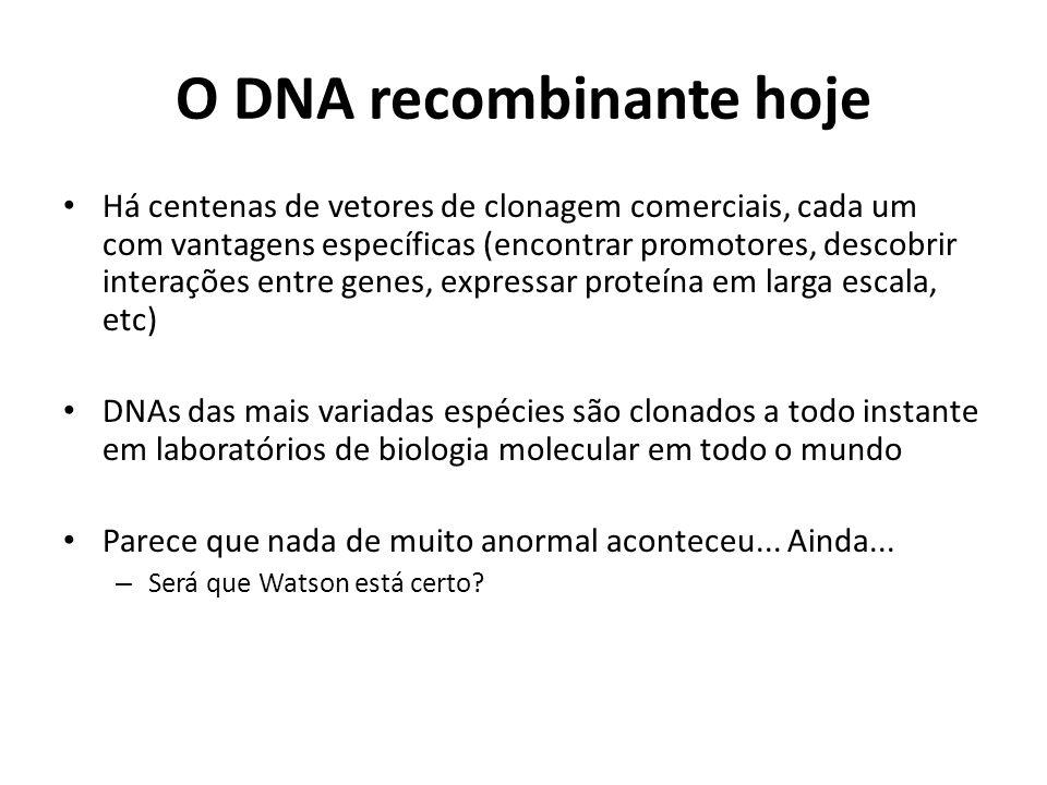 O DNA recombinante hoje Há centenas de vetores de clonagem comerciais, cada um com vantagens específicas (encontrar promotores, descobrir interações e