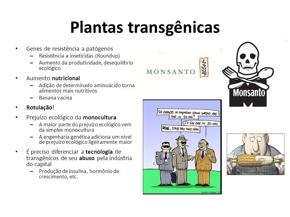 Plantas transgênicas Genes de resistência a patógenos – Resistência a inseticidas (Roundup) – Aumento da produtividade, desequilíbrio ecológico Aument
