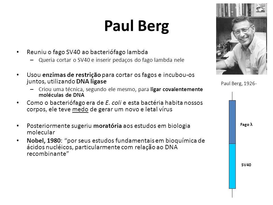 Paul Berg Reuniu o fago SV40 ao bacteriófago lambda – Queria cortar o SV40 e inserir pedaços do fago lambda nele Usou enzimas de restrição para cortar