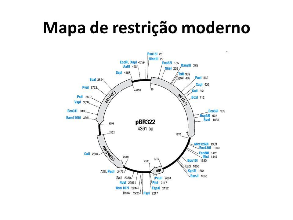 Mapa de restrição moderno