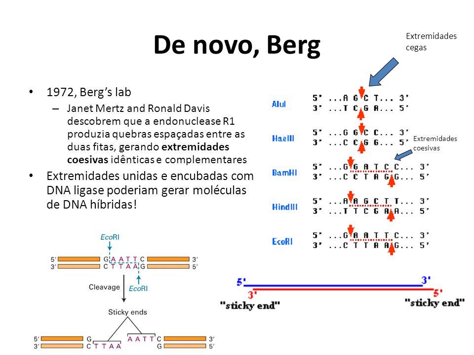 De novo, Berg 1972, Berg's lab – Janet Mertz and Ronald Davis descobrem que a endonuclease R1 produzia quebras espaçadas entre as duas fitas, gerando