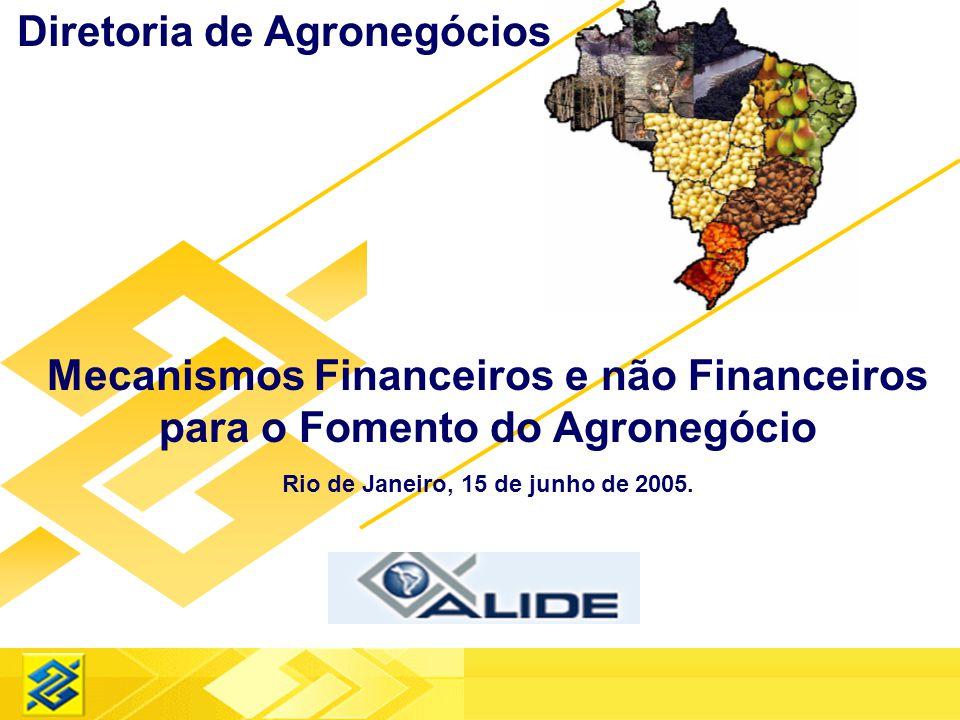 Diretoria de Agronegócios Mecanismos Financeiros e não Financeiros para o Fomento do Agronegócio Rio de Janeiro, 15 de junho de 2005.