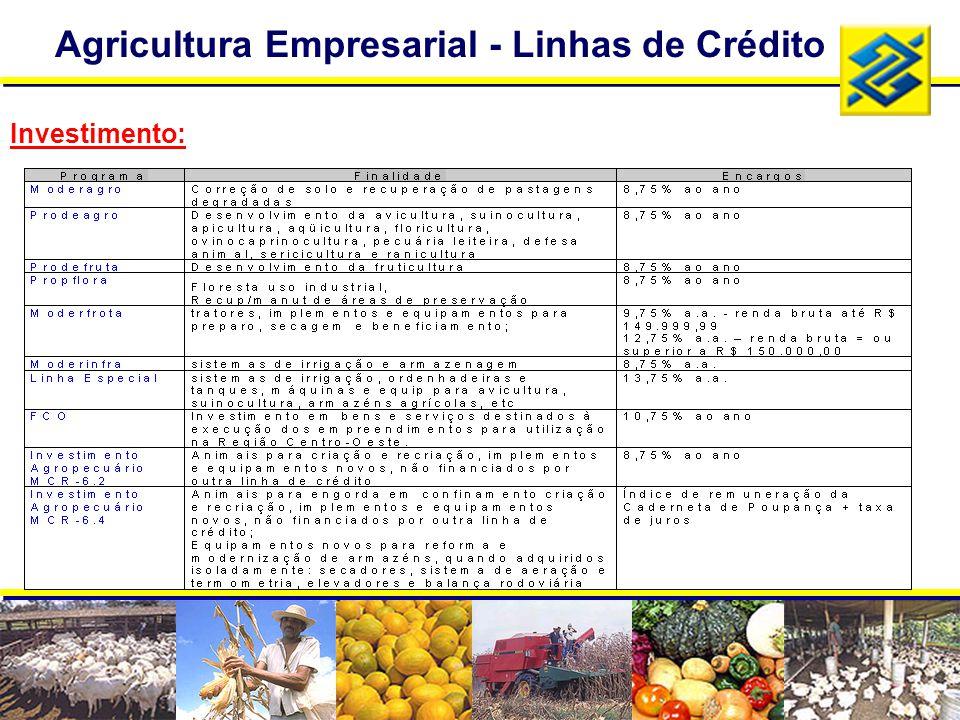 Agricultura Empresarial - Linhas de Crédito Investimento:
