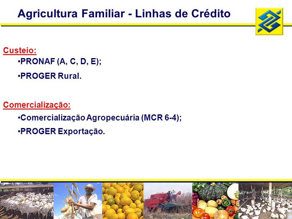 Agricultura Familiar - Linhas de Crédito Custeio: PRONAF (A, C, D, E); PROGER Rural. Comercialização: Comercialização Agropecuária (MCR 6-4); PROGER E