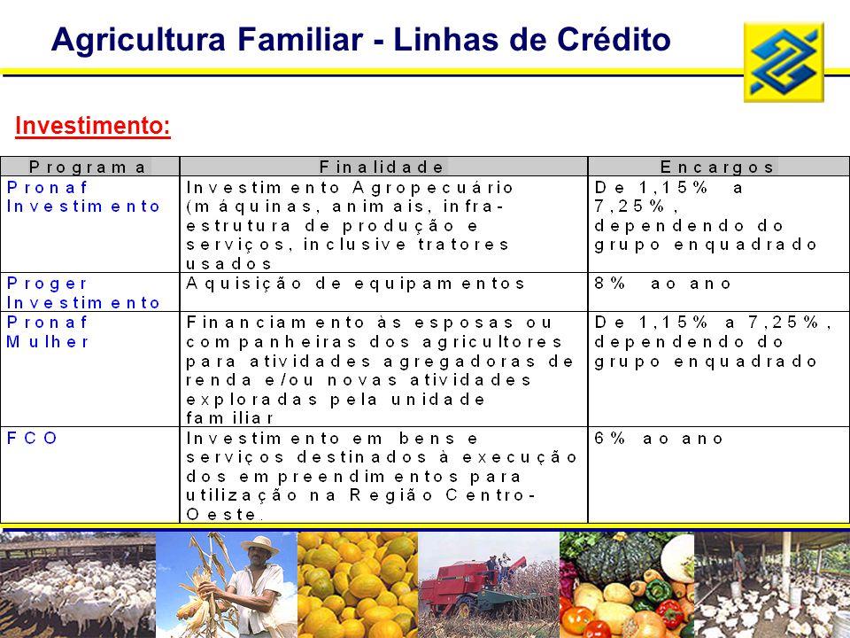 Agricultura Familiar - Linhas de Crédito Investimento: