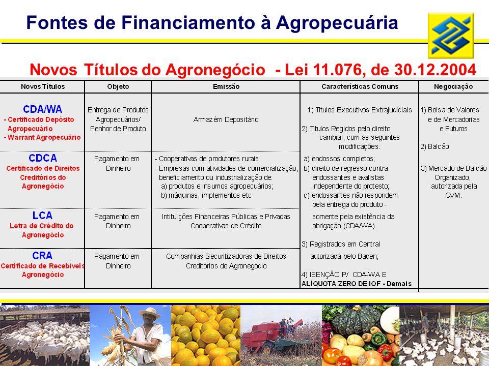 Fontes de Financiamento à Agropecuária Novos Títulos do Agronegócio - Lei 11.076, de 30.12.2004