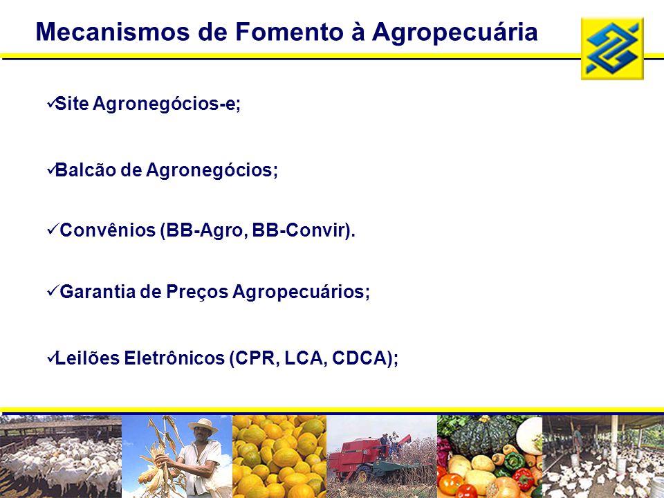 Mecanismos de Fomento à Agropecuária Site Agronegócios-e; Balcão de Agronegócios; Convênios (BB-Agro, BB-Convir). Garantia de Preços Agropecuários; Le