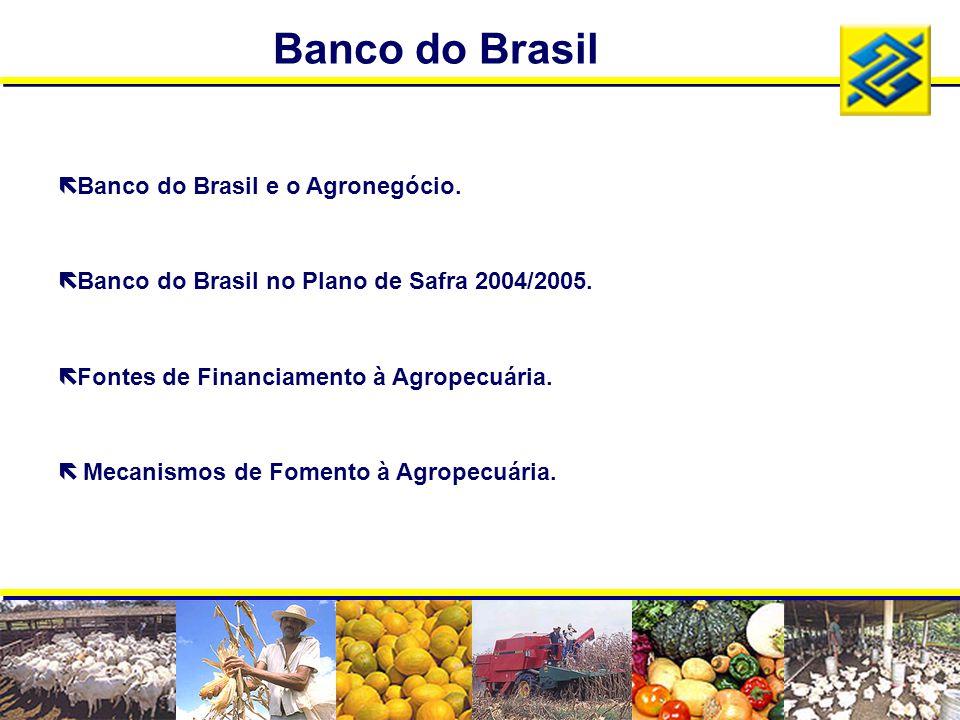 ë Banco do Brasil e o Agronegócio. ë Banco do Brasil no Plano de Safra 2004/2005. ë Fontes de Financiamento à Agropecuária. ë Mecanismos de Fomento à