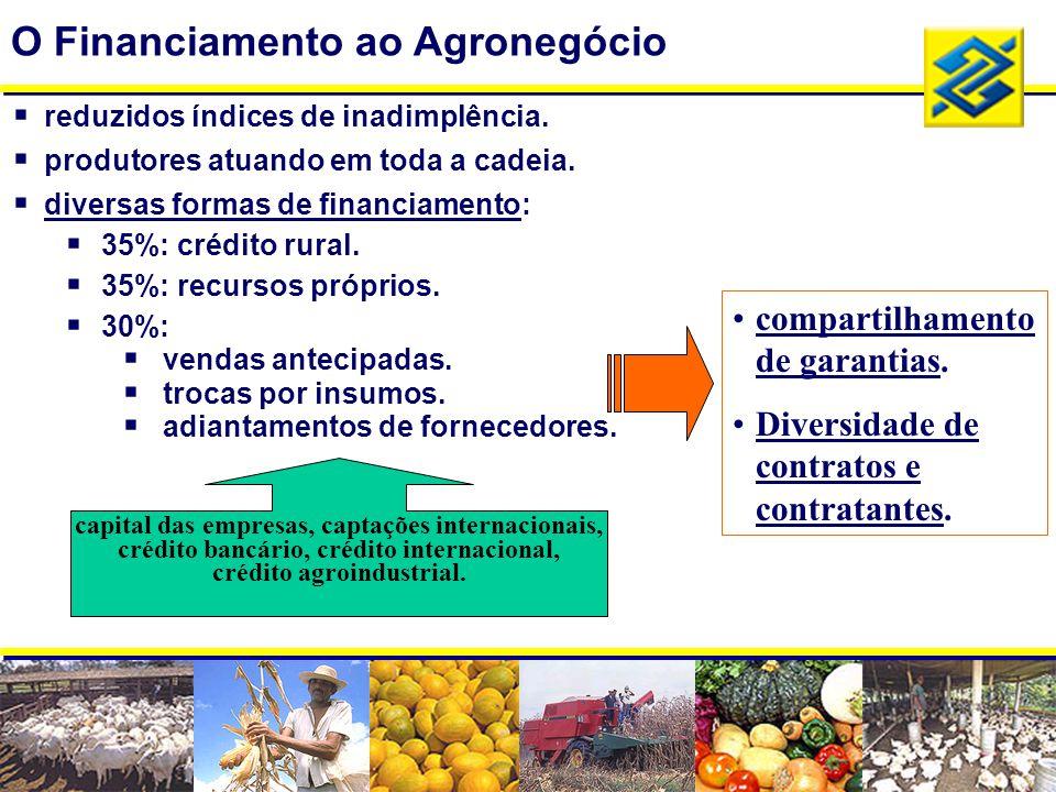  reduzidos índices de inadimplência.  produtores atuando em toda a cadeia.  diversas formas de financiamento:  35%: crédito rural.  35%: recursos