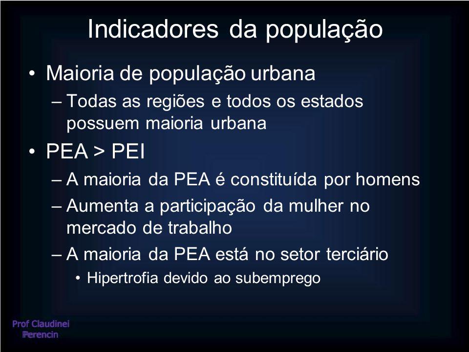 Indicadores da população Maioria de população urbana –Todas as regiões e todos os estados possuem maioria urbana PEA > PEI –A maioria da PEA é constituída por homens –Aumenta a participação da mulher no mercado de trabalho –A maioria da PEA está no setor terciário Hipertrofia devido ao subemprego