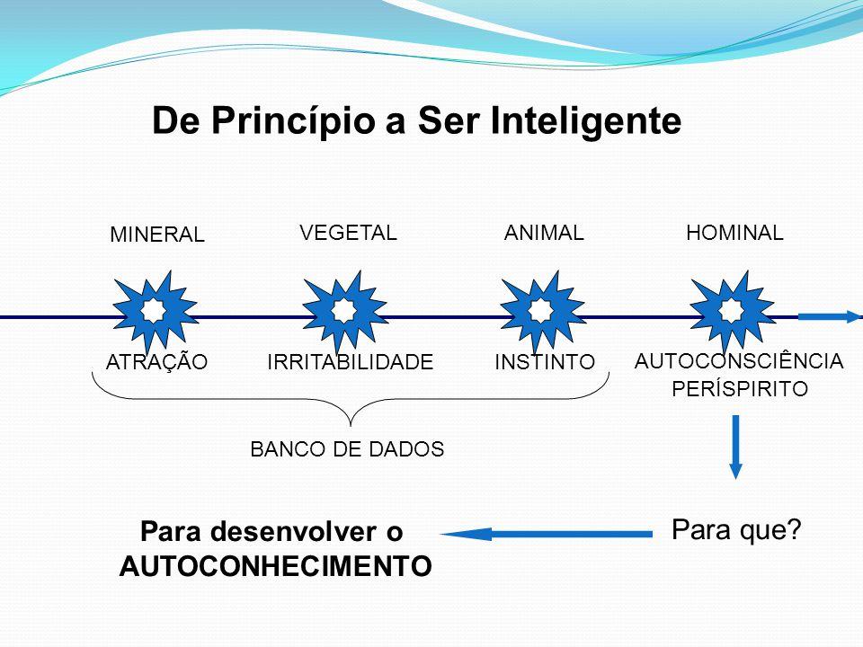 MINERAL VEGETALANIMALHOMINAL BANCO DE DADOS PERÍSPIRITO ATRAÇÃOIRRITABILIDADEINSTINTO AUTOCONSCIÊNCIA De Princípio a Ser Inteligente Para que? Para de
