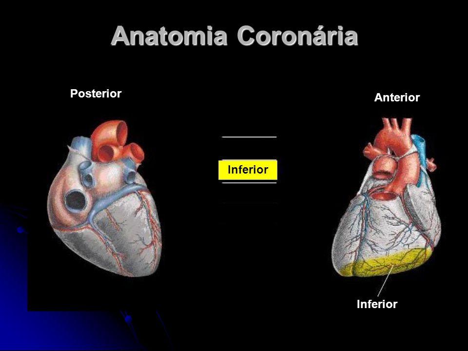 Anatomia Coronária Anterior Posterior Inferior