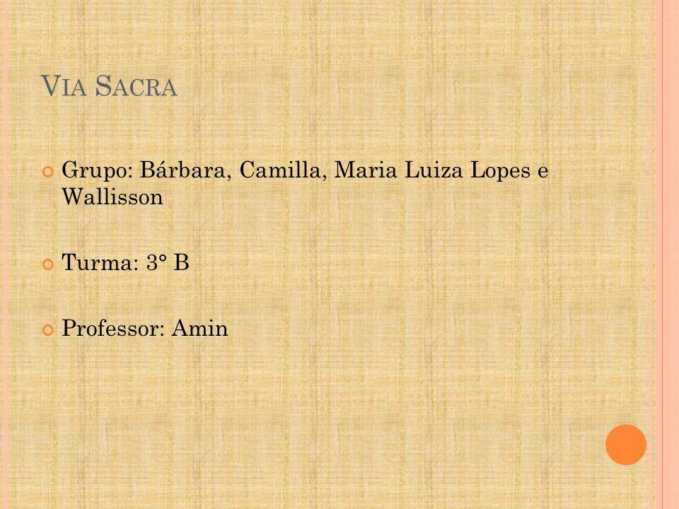 V IA S ACRA Grupo: Bárbara, Camilla, Maria Luiza Lopes e Wallisson Turma: 3° B Professor: Amin