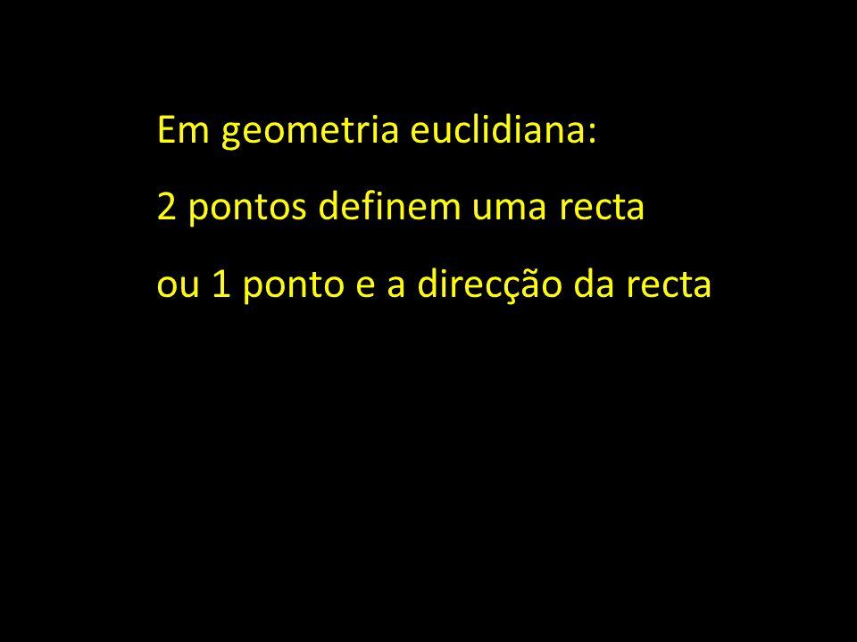 Em geometria euclidiana: 2 pontos definem uma recta ou 1 ponto e a direcção da recta ou seja: 1 ponto + 1 vector