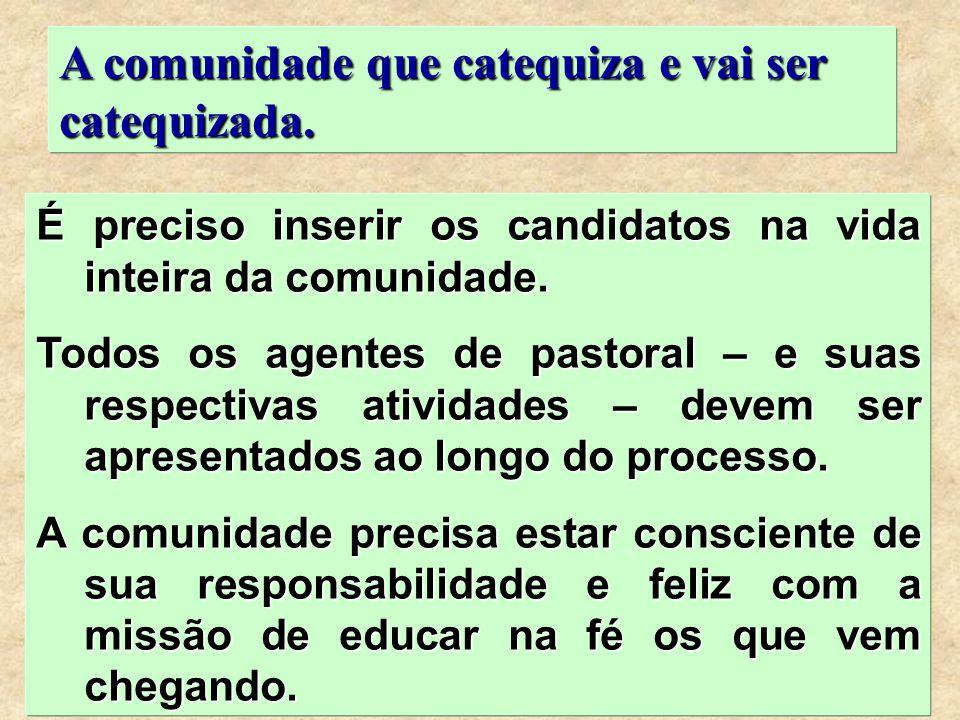 29 É preciso inserir os candidatos na vida inteira da comunidade. Todos os agentes de pastoral – e suas respectivas atividades – devem ser apresentado