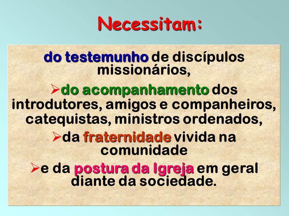 36 do testemunho do testemunho de discípulos missionários, do acompanhamento  do acompanhamento dos introdutores, amigos e companheiros, catequistas,