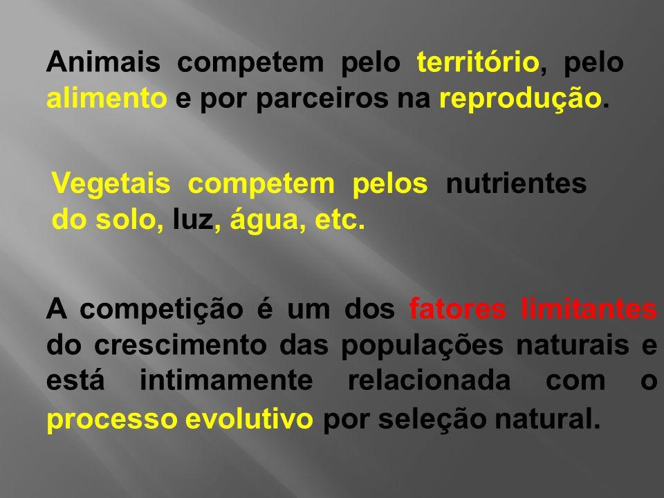 A competição é um dos fatores limitantes do crescimento das populações naturais e está intimamente relacionada com o processo evolutivo por seleção natural.