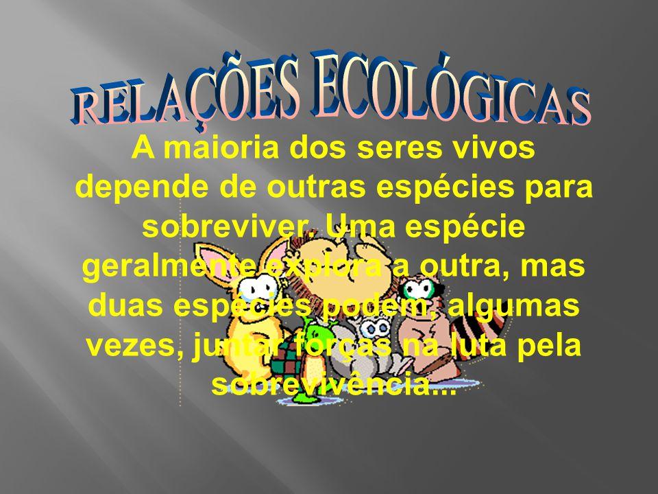 A maioria dos seres vivos depende de outras espécies para sobreviver.