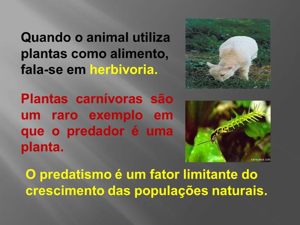 O predatismo é um fator limitante do crescimento das populações naturais.