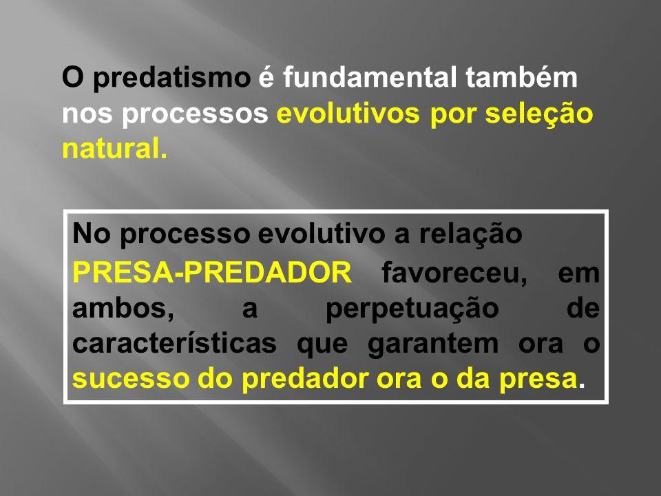 No processo evolutivo a relação PRESA-PREDADOR favoreceu, em ambos, a perpetuação de características que garantem ora o sucesso do predador ora o da presa.